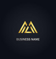 triangle shapeline business logo vector image vector image