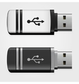 USB pen drives vector image vector image