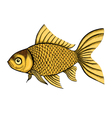 fish painted in a graphic style vector image