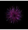 festive golden firework salute vector image