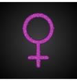 Gender Women Pink Sequins Flat vector image vector image