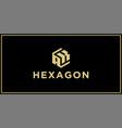 ak hexagon logo vector image