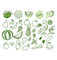 bio food and ingredients fruits and vegetables vector image vector image
