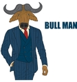 Cartoon character bull vector image