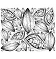 hand drawn background of theobroma cacao fruits vector image vector image