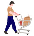 character shopping buying products pushing cart vector image