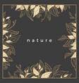 design nature square tea vector image
