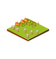fire in forest natural disaster icon vector image