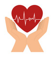 hands with heart cardio icon vector image vector image