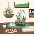 interior of cozy room with succulents cactuses vector image vector image