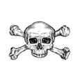 Jolly roger Hand drawn human skull and crossbones vector image vector image