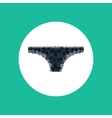 Lace panties vector image vector image