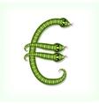 Snake font Euro symbol vector image