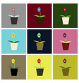 assembly flat icons flower in a pot vector image vector image