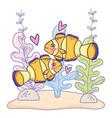clownfish couple animal with seaweed plants vector image vector image