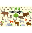 forest animals woodland cute animal set drawing vector image