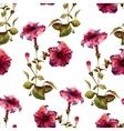 Petunia flower pattern vector image