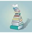 Rabbit and books