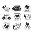 stevia organic product logo set natural sweetener vector image vector image