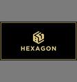 bg hexagon logo vector image