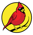 Cardinal bird vector | Price: 1 Credit (USD $1)