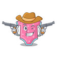 cowboy character baby clothes hanging on vector image