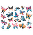 hand drawn butterfly flower butterflies moth vector image