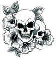 human skull and flower wreath los muertos vector image