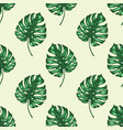 pattern with green tropical leaves vector image