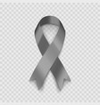 stock gray ribbon isolated on vector image
