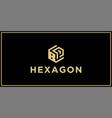 bp hexagon logo vector image vector image