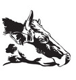 contour portrait bull black vector image vector image