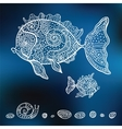 hand drawn fishes vector image vector image