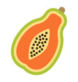 papaya flat icon fruit and tropical vector image vector image