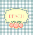 peach label in retro style on squared background vector image vector image