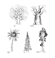 Set of hand-drawing style of graphic trees vector image vector image