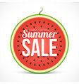 summer sale on watermelon slice isolated on white vector image vector image