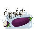 vegetable food banner eggplant sketch organic vector image vector image