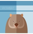 Wombat flat postcard vector image vector image