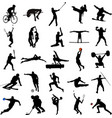 25 high quality sport silhouettes vector image