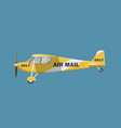 air mail plane vector image vector image