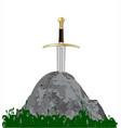 arthurs sword vector image vector image