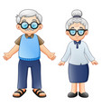 cartoon elderly couple vector image