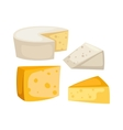 Cheese slices isolated vector image