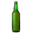 Green bottle of beer vector image vector image