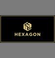 hexagon logo vector image vector image