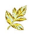 yellow dahlia leaf vector image vector image