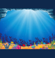 a beautiful ocean background with the blue water vector image vector image