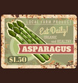 asparagus vegetable metal plate rusty farm food vector image vector image