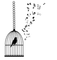 bird notes vector image